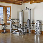 VECTRA ON-LINE 1450 GYM